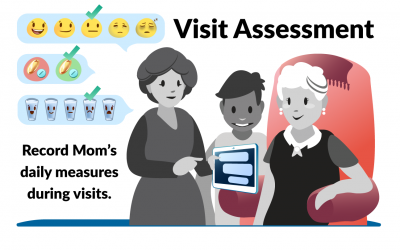 The Visit Assessment